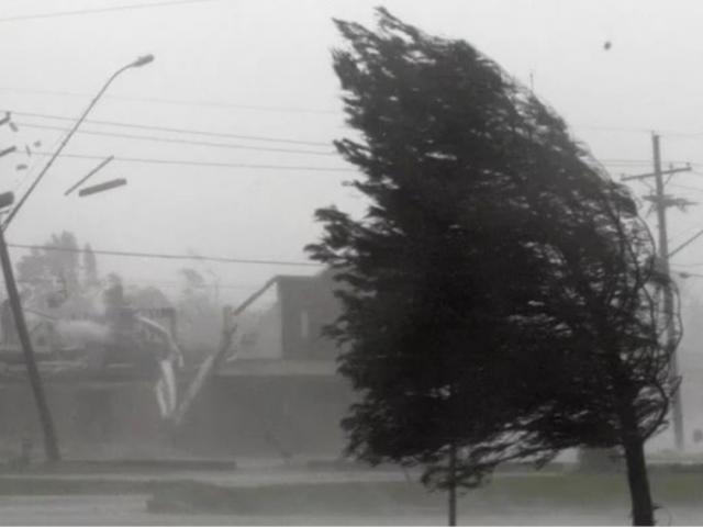 Синоптики предупреждают о порывах ветра до 15 м/с