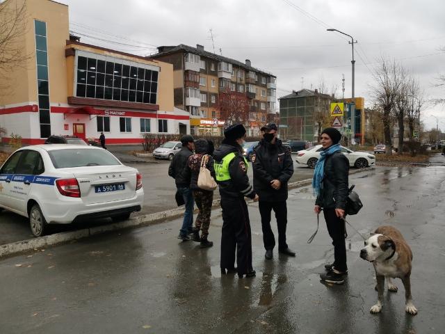 В ГИБДД Первоуральска подвели итоги оперативно – профилактического мероприятия «Безопасная дорога»